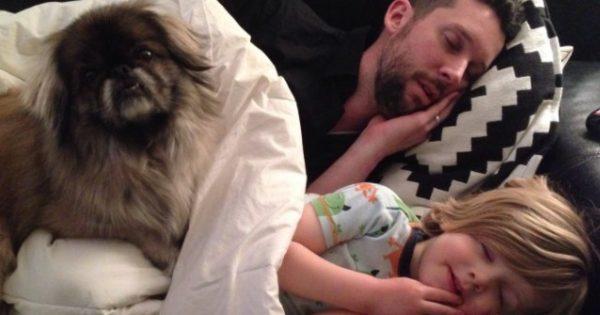 Πατέρας, σκύλος και γιος αποκοιμούνται παρέα εδώ και χρόνια και η μαμά το καταγράφει με την κάμερα της!