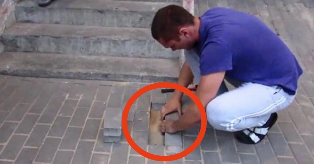 διάσωση σκύλου