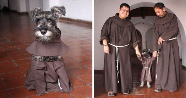 Aυτό το μοναστήρι υιοθέτησε έναν αδέσποτο σκύλο και πλέον απολαμβάνει την ζωή του ως μοναχός!