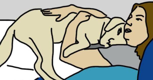 10 τρόποι που ο σκύλος σας δείχνει ότι σας αγαπάει