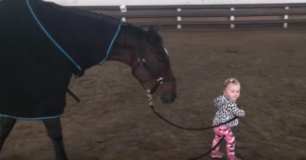 Μικρό κοριτσάκι αγαπάει να βγάζει το άλογο της βόλτες