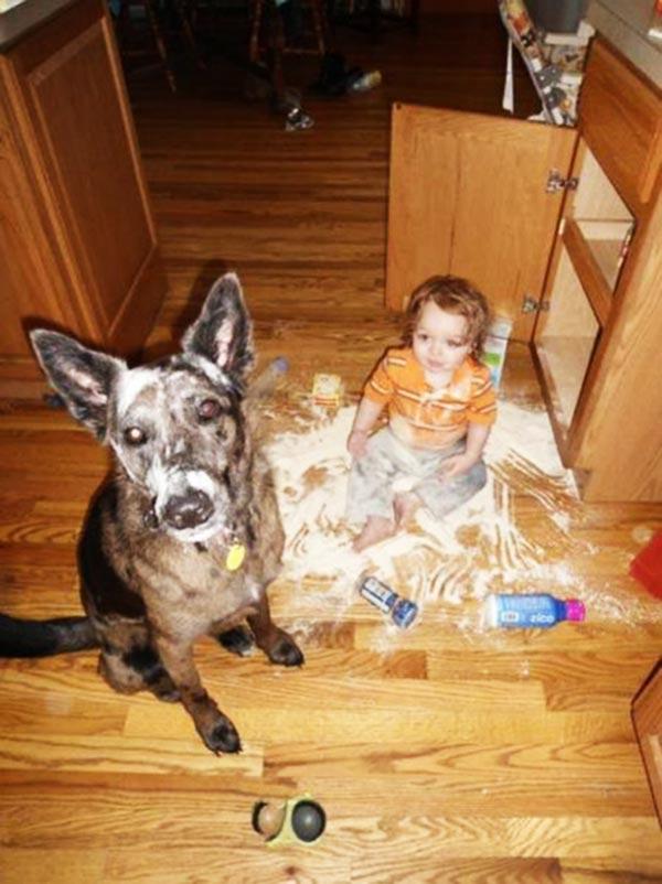 σκυλιά παιδιά