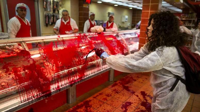 σφαγή ζώων Κοσέρ: Η σφαγή ζώων χωρίς αναισθητοποίηση ήρθε και στην Ελλάδα κοσέρ Η σφαγή ζώων χωρίς αναισθητοποίηση kosher ..