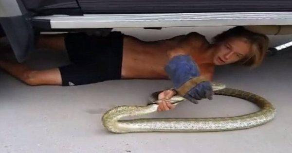 Αυστραλία: Ο 14χρονος που ξετρυπώνει πύθωνες κάτω από αυτοκίνητα (βίντεο)