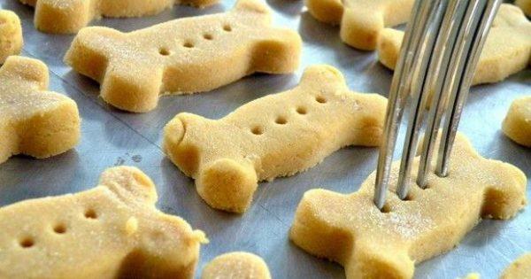 Φτιάξε μπισκότα για το σκύλο σου: 3 σπιτικές σούπερ συνταγές
