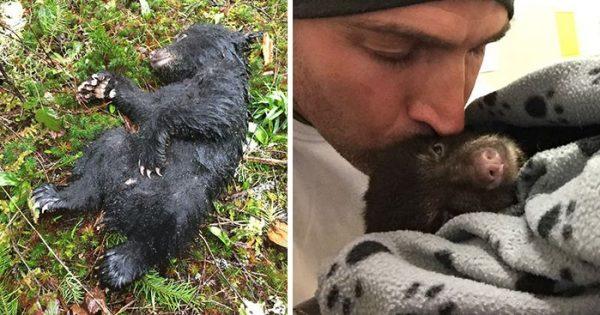 Αυτός ο άνδρας ρίσκαρε να πάει φυλακή για να σώσει μια μικρή αρκούδα