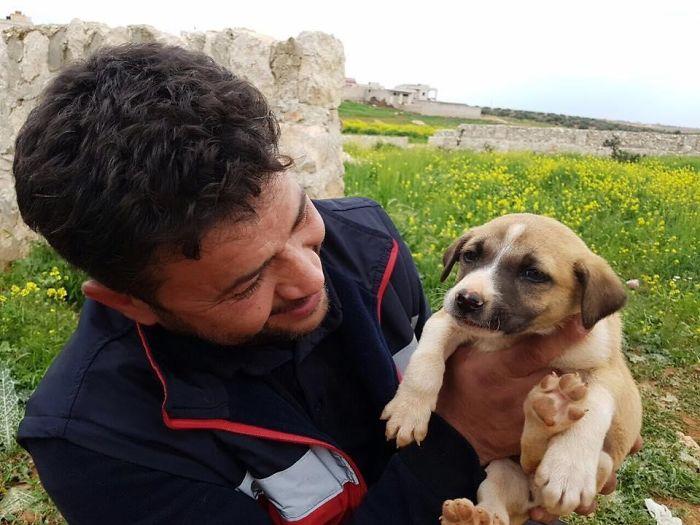 βοήθεια αδέσποτων αδέσποτη σκυλίτσα Αδέσποτα