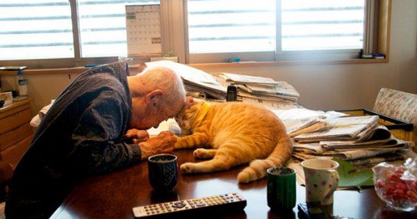 Άνδρας δωρίζει μια γάτα στον ηλικιωμένο παππού του και του αλλάζει την ζωή