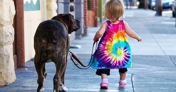 Παιδιά και σκυλιά σε 20 απίθανες πόζες!