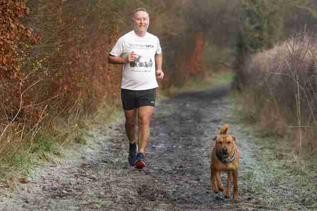 Σκύλος που εγκαταλείφθηκε σε σταθμό τρένων λατρεύει να τρέχει μαραθώνιους με τον νέο του μπαμπά σκύλος που εγκαταλείφθηκε Σκύλος σκύλοι