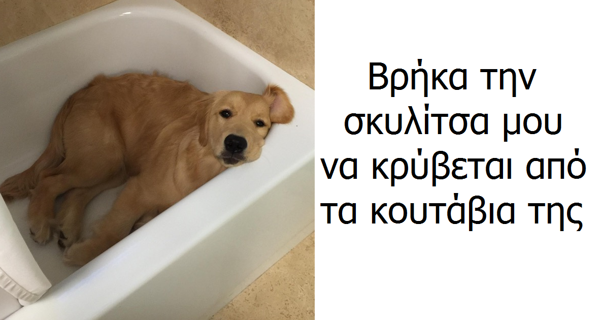 702768.png