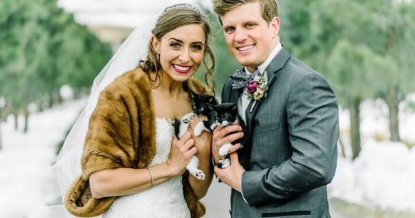 Δύο φιλόζωοι κτηνίατροι έφεραν τα διασωμένα γατάκια τους στον γάμο τους και οι φωτογραφίες είναι αξιαγάπητες