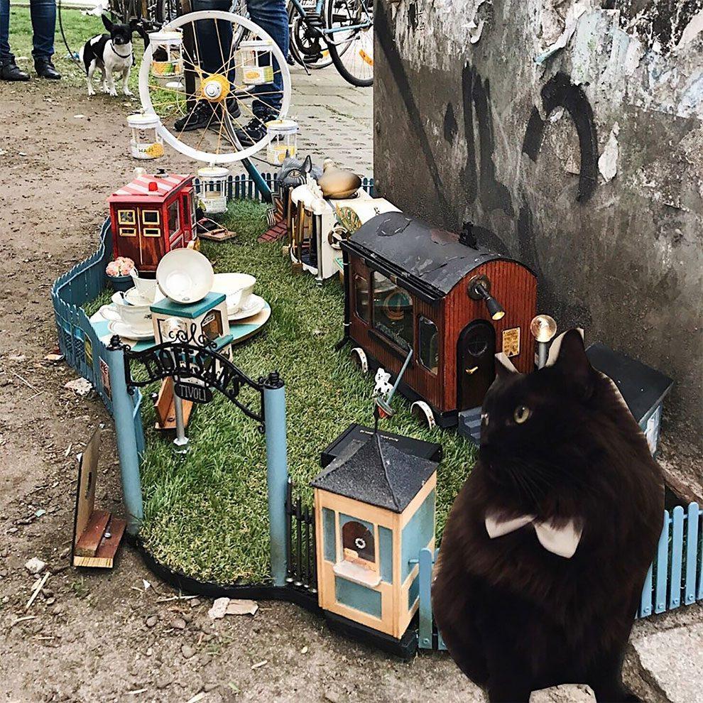 ποντίκια λούνα παρκ