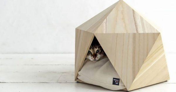 Γεωμετρικά σπιτάκια ιδανικά για το κατοικίδιό σας!