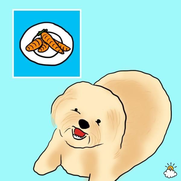 υγιεινά φαγητά 10 υγιεινά φαγητά τα οποία πρέπει να ταΐζετε και στον σκύλο σας αν θέλετε να έχει μια σωστή και ισορροπημένη διατροφή.