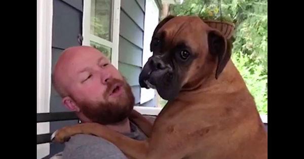 Ρώτησε τον σκύλο του αν είναι σκύλος ή μωράκι. Η απάντησή του; Θα σας κάνει να λιώσετε!