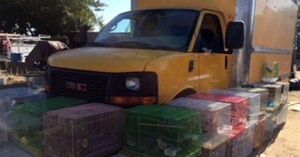 Το φορτηγό ήταν για μέρες παρκαρισμένο μες τον καύσωνα και είχε αρχίσει να βρωμάει. Όταν άνοιξαν την καρότσα; Έπαθαν ΣΟΚ!