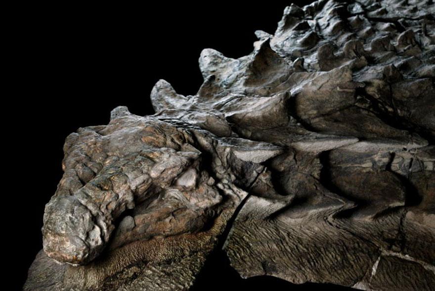 δεινόσαυρος