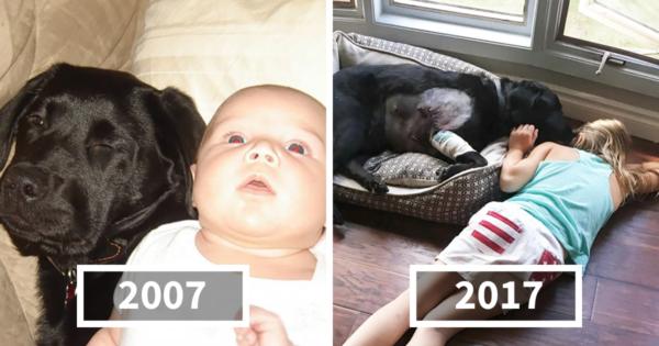 Όλοι την προειδοποιούσαν να μην πάρει σκύλο στο νεογέννητο μωρό της, αλλά αυτή δεν τους άκουσε. 10 χρόνια αργότερα…