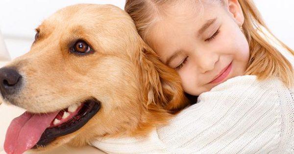 Υπάρχουν τελικά υποαλλεργικά σκυλιά;