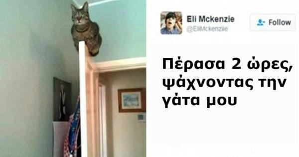 15 φωτογραφίες από γάτες που κυκλοφορούν στο διαδίκτυο και θα σας πάρουν το μυαλό! Ειδικά η 3η είναι…