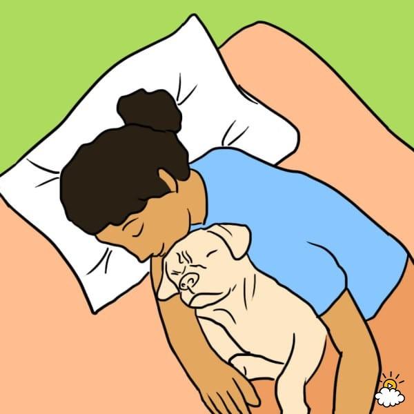 ύπνος με το σκύλο ύπνος Σκύλος