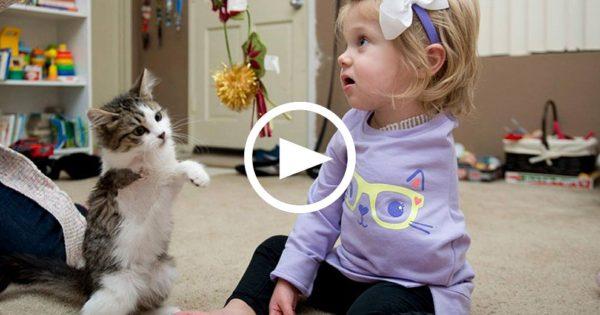 Κοριτσάκι με ένα χέρι συναντά γάτα με τρία πόδια για πρώτη φορά. Οι αντιδράσεις τους, έχουν συγκλονίσει το διαδίκτυο!