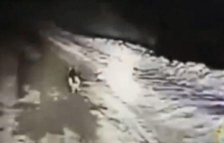 Ένας αστυνομικός είδε ένα σκυλί στη μέση του πουθενά και το ακολούθησε… Δείτε που τον οδήγησε (βίντεο)