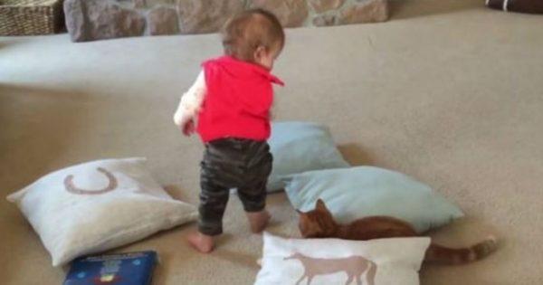 To χαριτωμένο μωρό που εκτόπισε τη γάτα και βρέθηκε…στον αέρα! (βίντεο)