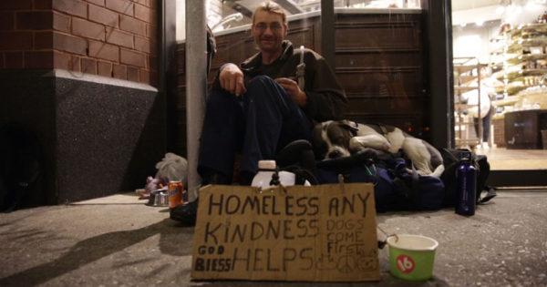 Άστεγοι και αδέσποτα: Μια μαγική σχέση αυτό-βελτίωσης
