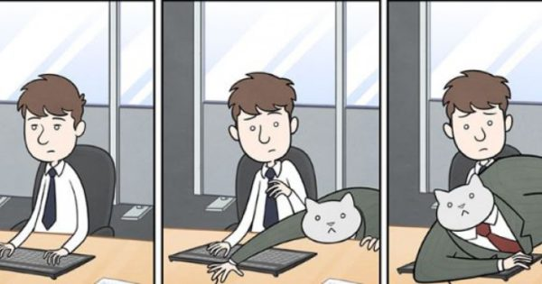 24 πράγματα που θα έκανε το αφεντικό σου αν ήταν γάτα