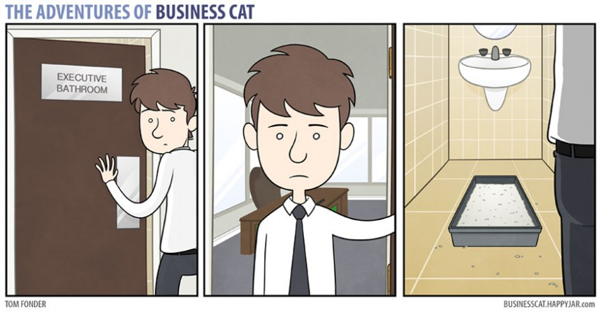 γάτες αφεντικά
