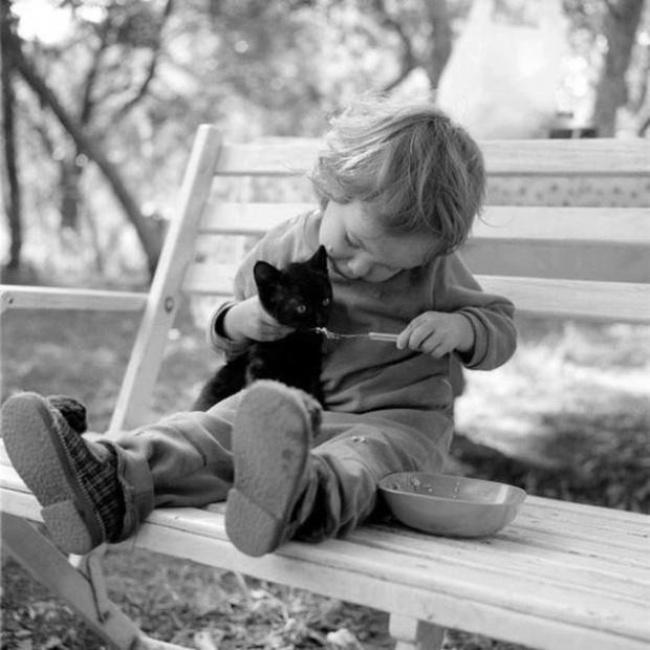 παιδιά και κατοικίδια παιδί κατοικίδιο κατοικίδια φωτογραφίες