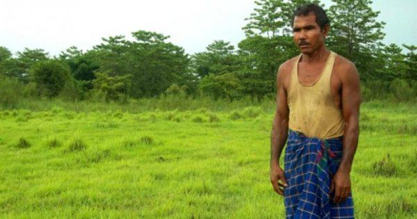 Φύτεψε ολόκληρο δάσος ολομόναχος (εικόνες, βίντεο)