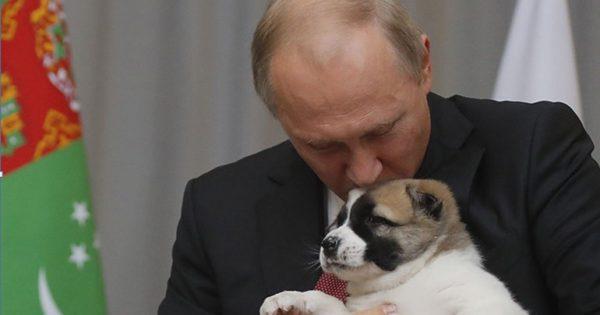 Tα κατοικίδια του προέδρου Πούτιν