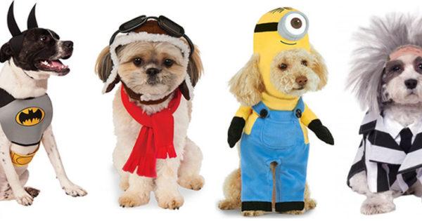 Τα κουστούμια που θα βάλουν τα ζώα στο Halloween!