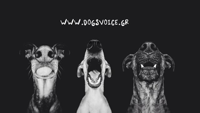 υιοθεσία αδέποστων Παγκόσμια Ημέρα Ζώων