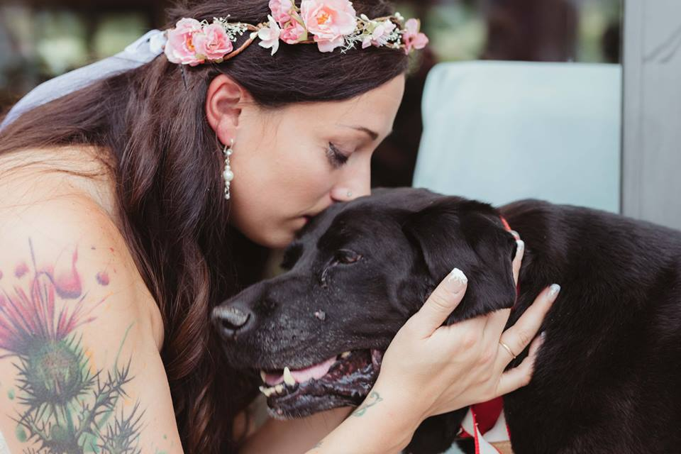 NTD-15-year-old-dying-dog-live-see-owner-wedding-1