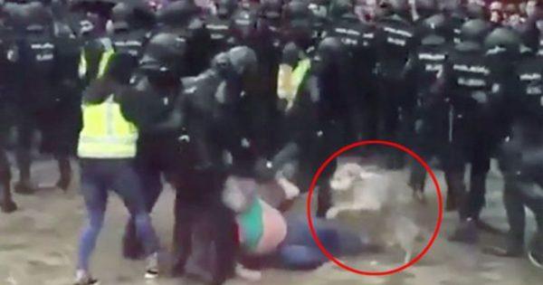 Καταλονία: Σκύλος αρνείται να εγκαταλείψει τον ιδιοκτήτη του την ώρα που τον χτυπούν οι αστυνομικοί (vid)