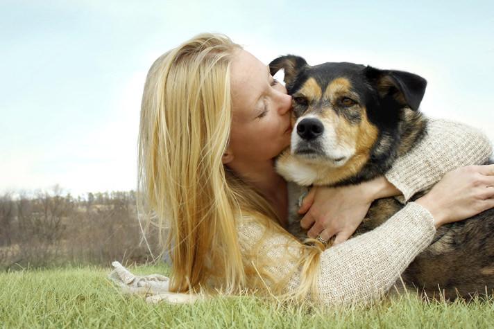 Σκύλος ηλικιωμένος σκύλος tips ηλικιωμένος σκύλος
