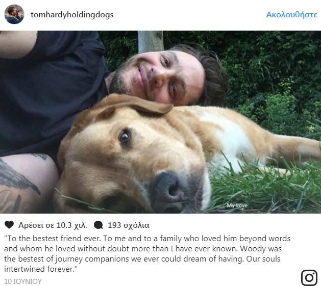 φωτογραφίες με σκυλάκια σκυλάκια tom hardy φωτογραφίες
