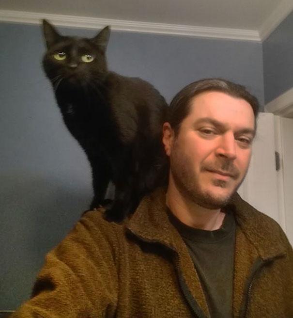 υιοθεσία αδέσποτων οδηγός Γάτα