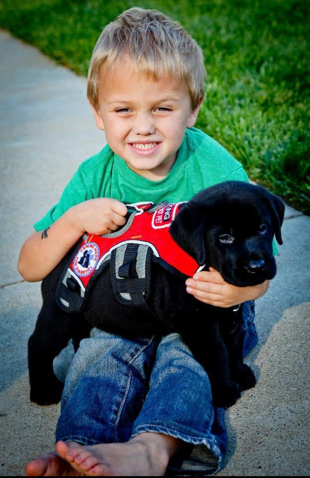 σκύλος και παιδί Σκύλος