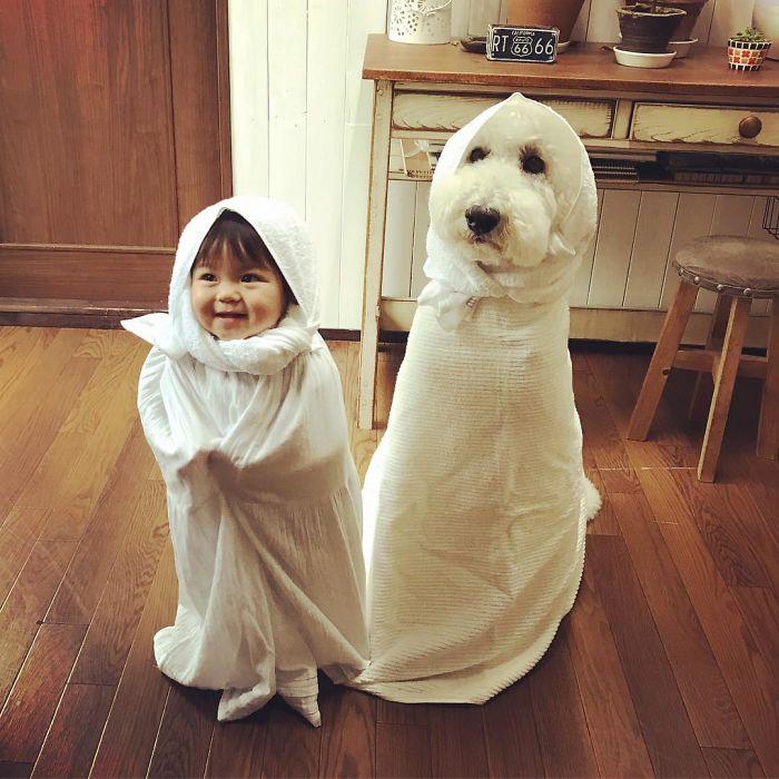 σκύλος και παιδί Σκύλος Ιαπωνία