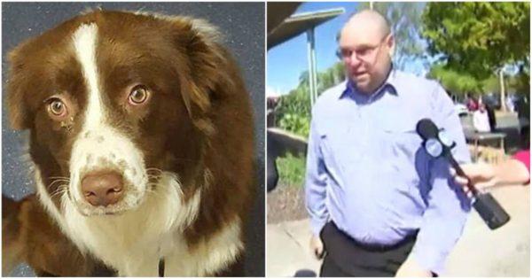«Ζωόφιλος» έπνιξε το σκύλο του γείτονα του επειδή το ζώο μπήκε στην αυλή του και του έφαγε μια κότα