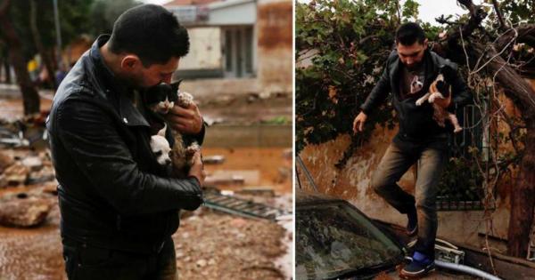 Κάτοικος σώζει γατάκι και σκυλάκι για να μην πνίγουν στις πλημμύρες στην Δ. Αττική