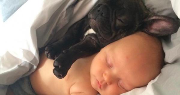 Το μωρό και ο σκύλος της γεννήθηκαν την ίδια ημέρα, τα δυο μικρά πιστεύουν πως είναι αδέλφια και κάνουν τα πάντα μαζί