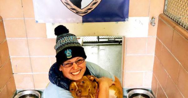 Καταφύγιο ζώων ξεχωρίζει τα σκυλιά του με βάση τους οίκους από τις ταινίες Harry Potter