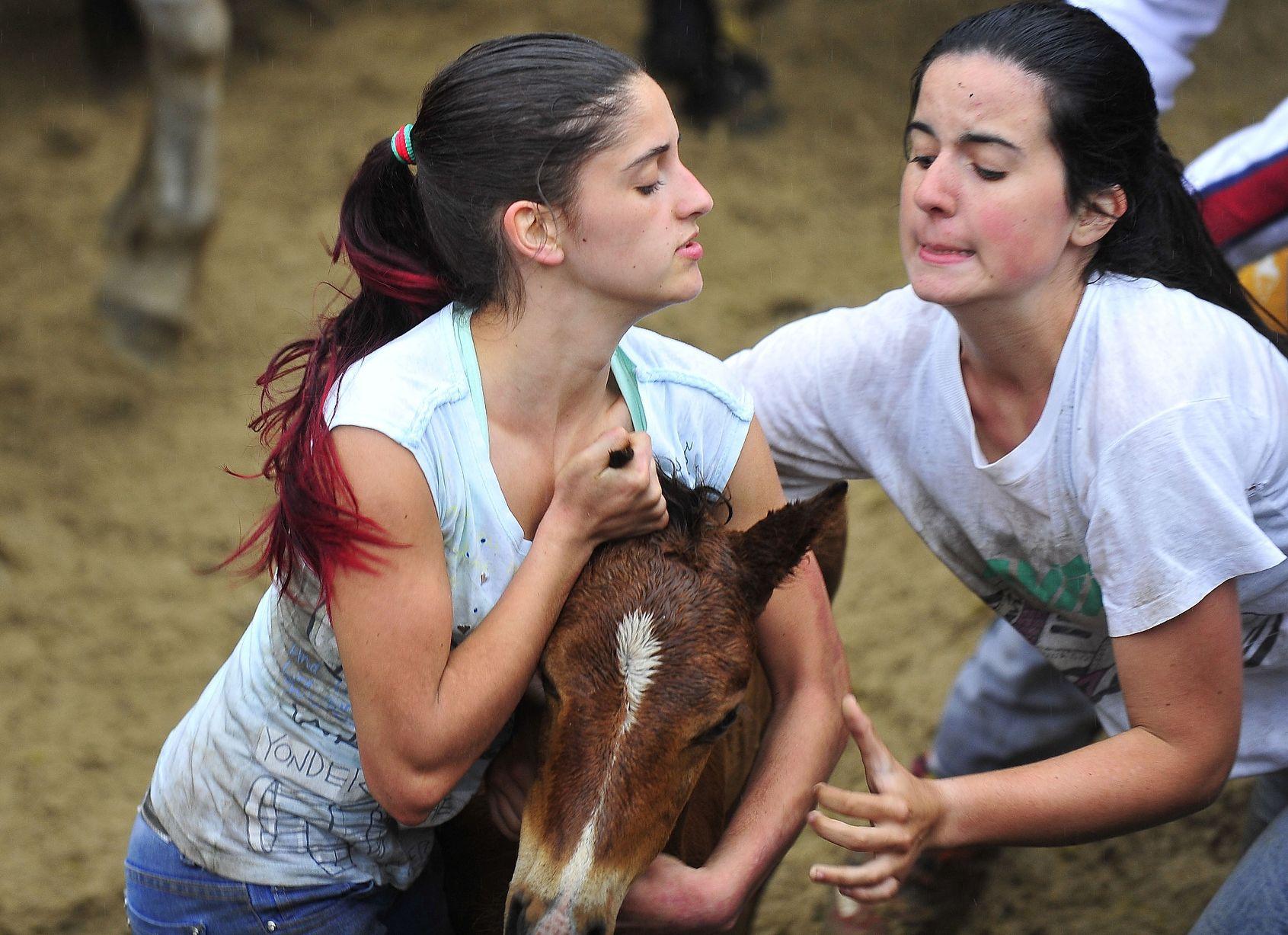 κακοποίηση ζώων Ισπανία άλογα