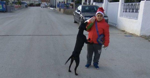 Με τα χρήματα από τα κάλαντα αγόρασε τροφή για τα αδέσποτα σκυλάκια της γειτονιάς του